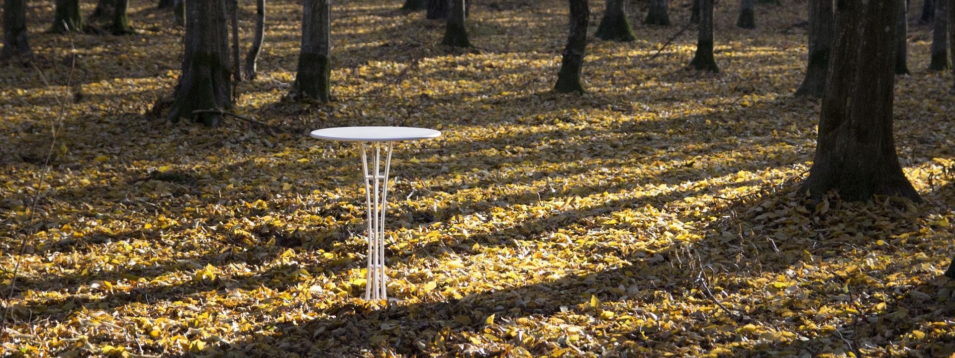 Vis Table 560